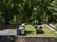 خوانسار، سرزمین چشمههای جاری/ عکس