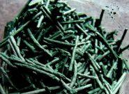 کاهشLDLو تری گلیسیرید، خاصیت ضد سرطانی و محافظت از سلول های سالم در جلبک اسپیرولینا
